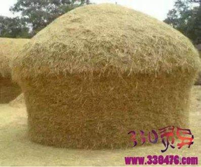 农村灵异事件真实案例:麦秆堆怪谈