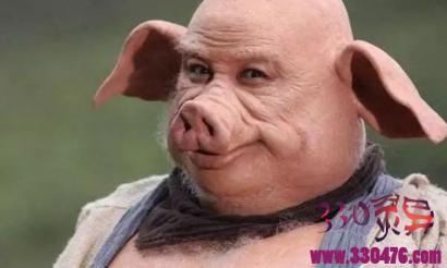 猪八戒错投猪胎,为啥不顾一切咬死生他的母猪?