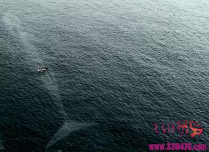 为何人类会有深海恐惧症?