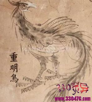 重明鸟:传说中吃龙的神秘生物!