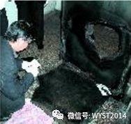 """汝阳""""11.13""""特大杀人抢劫银行金库案侦破纪实"""