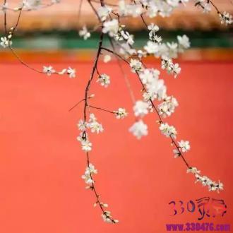 中国最美的颜色都在这儿!