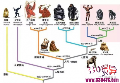 论人类不平等的起源:人到底是他妈生的,还是神造的,老祖宗啊,你谁啊?