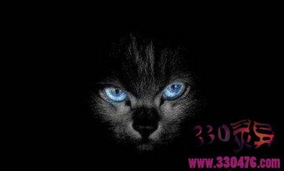 深圳灵异事件:在深圳南山亲历的三起真实灵异事件猫,古曼童,女鬼