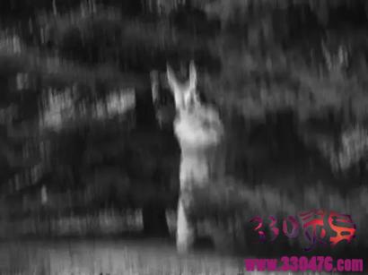 兔人:克里夫顿小城兔人杀人惨案马可斯还是道格拉斯灵魂作案?