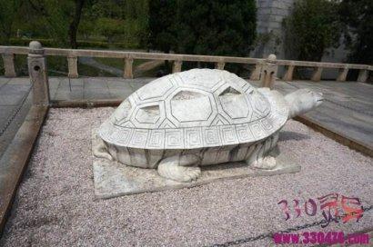 挖出的石龟