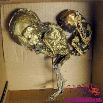 """古曼童是什么?泰国墓地11具婴尸被盗,疑似被制成""""古曼童""""小鬼出售"""