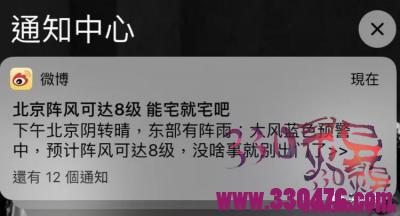 北京十级大风砸死人了