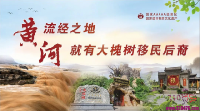 洪洞大槐树:延续600年的乡愁