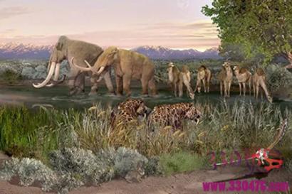 美国新墨西哥州白沙国家公园现冰河时代远古人类足迹,科学家还原背后故事