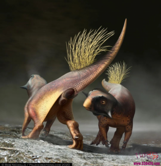 恐龙如何排泄交配?
