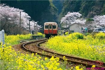 出国的火车,原来有这么多:俄罗斯K3、K19,蒙古K19、K23,朝鲜K27,越南T8701,哈萨克斯坦K9795、K9