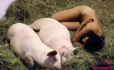 行为艺术家美女MiruKim与猪裸睡!如今的行为艺术真是越来越骚